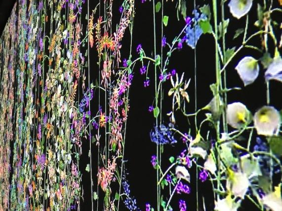 expo_flores